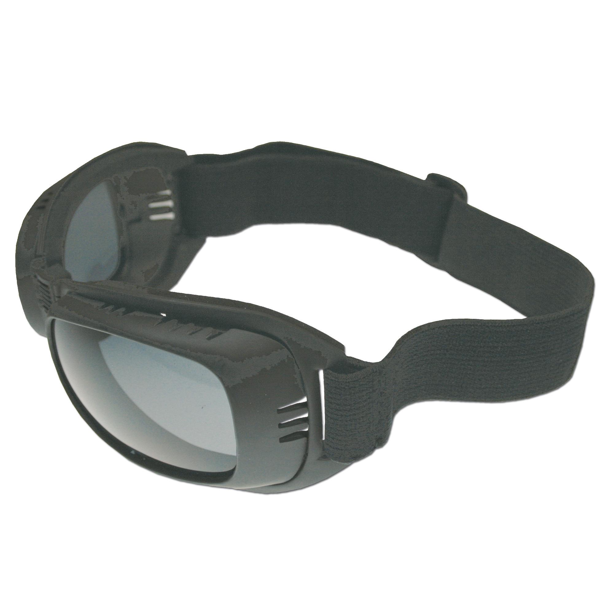 Biker Glasses Eagle 2 black