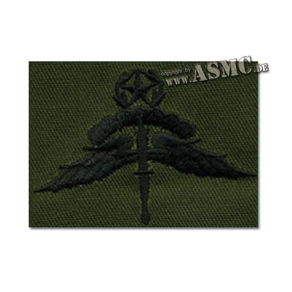 Insignia US Freefall Halo Master embroidered olivgreen