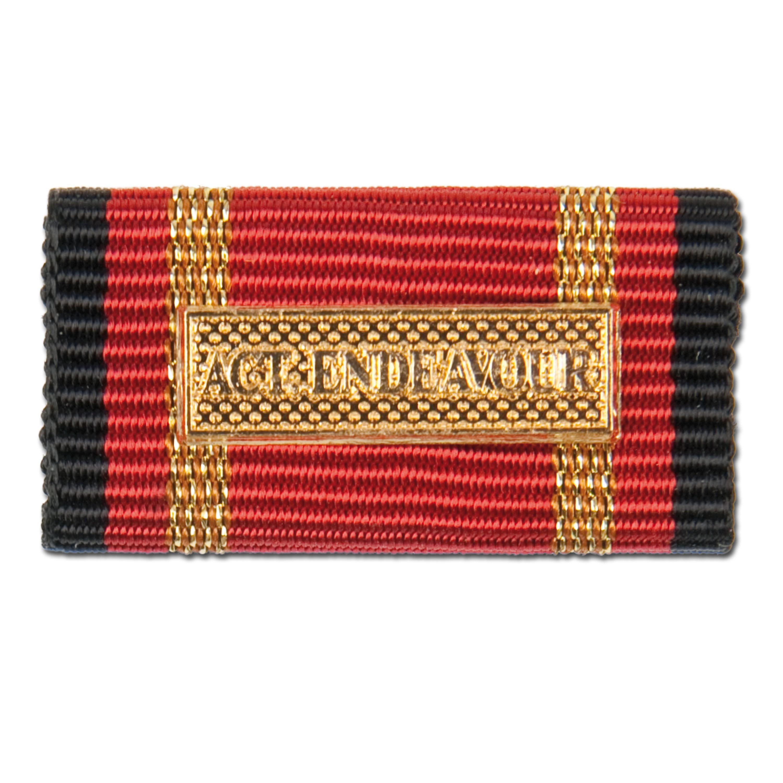Label Pin Auslandseinsatz Active Endeavour gold