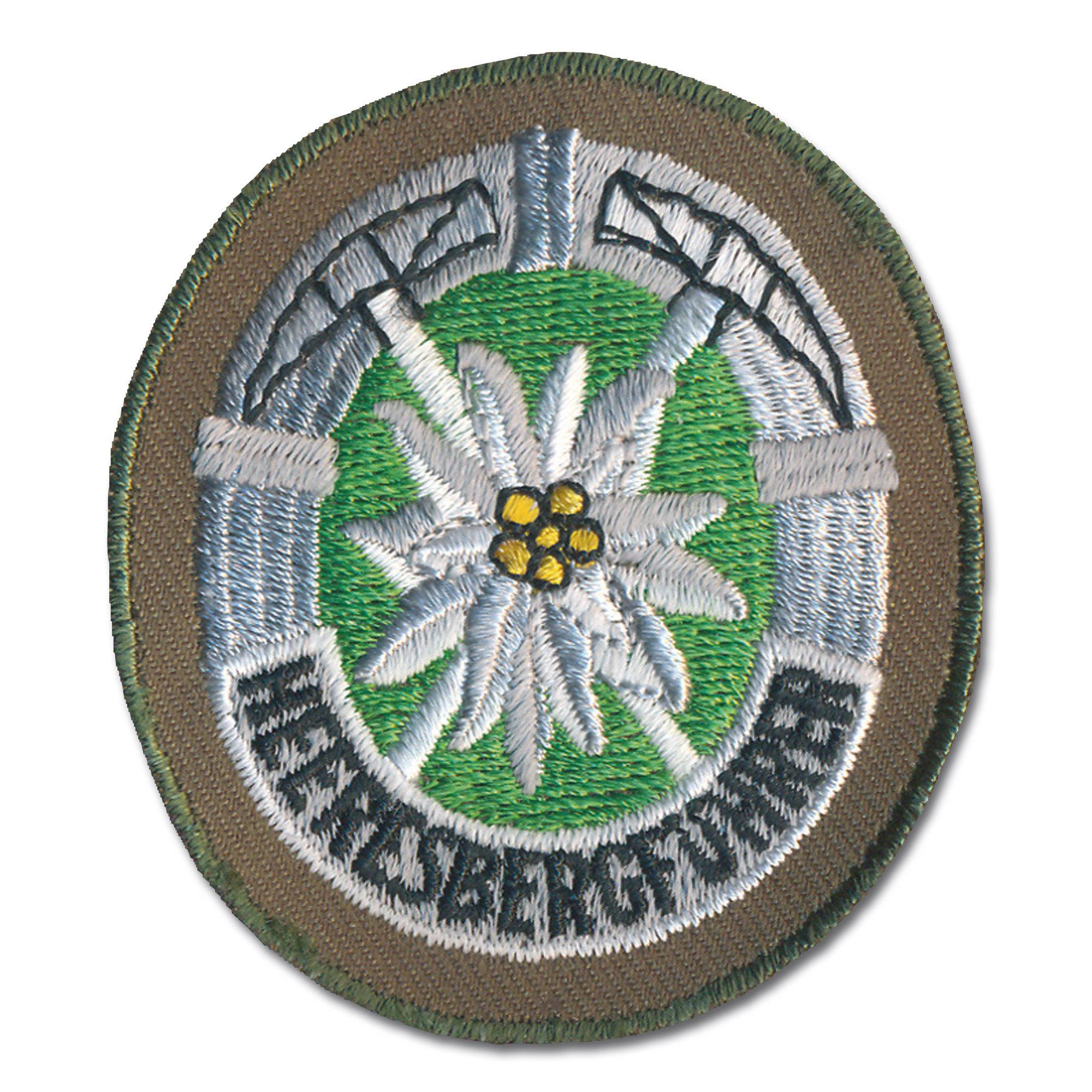 Distintivo di servizio militare alpino Bw oliva