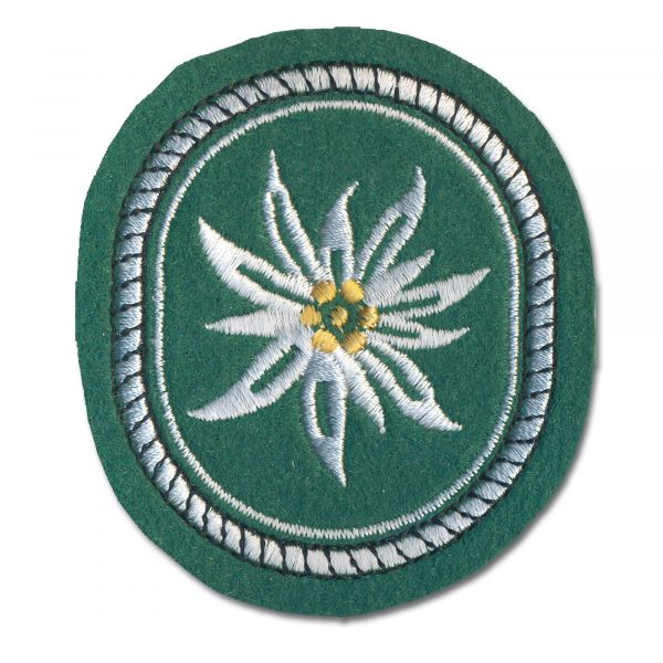 Distintivo in tessuto 1. divisione montagna