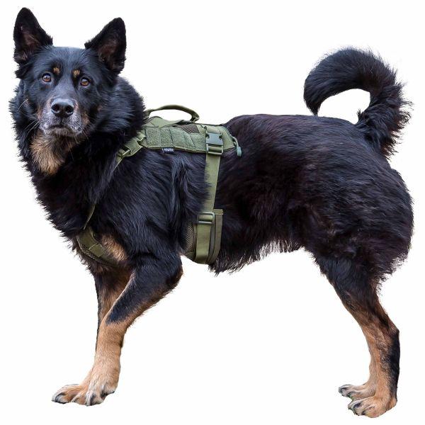Gilet tattico per cane Primal Gear Harness oliva