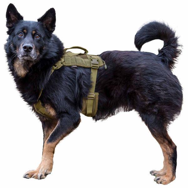 Gilet tattico per cane Primal Gear Harness tan