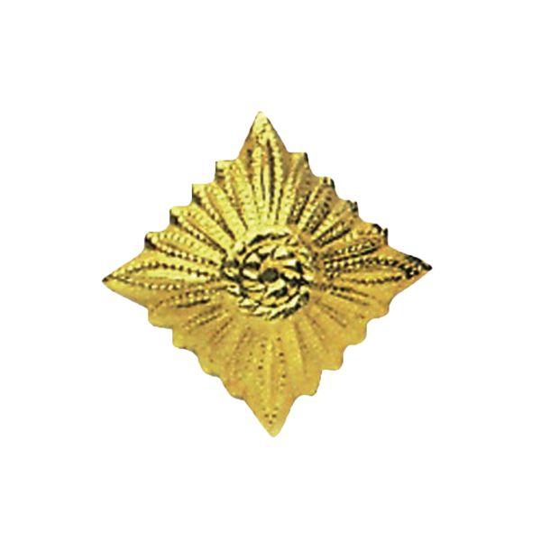 Distintivo di grado NVA oro